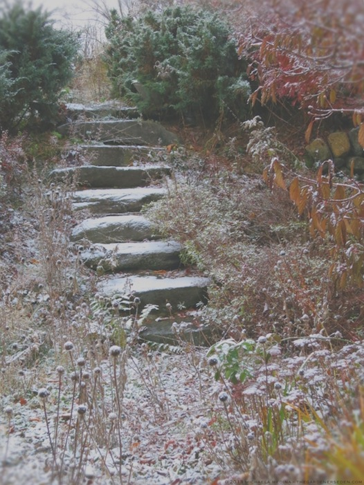 Secret Garden Steps with Snow - michaela medina harlow - thegardenerseden.com