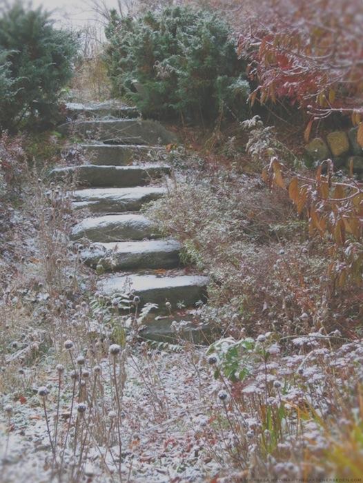 Secret Garden Steps with Snow - michaela medina harlow - thegardenerseden.com