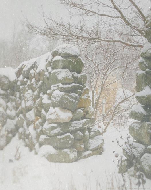 swirling snow in the secret garden - copyright 2013 michaela medina harlow - thegardenerseden.com